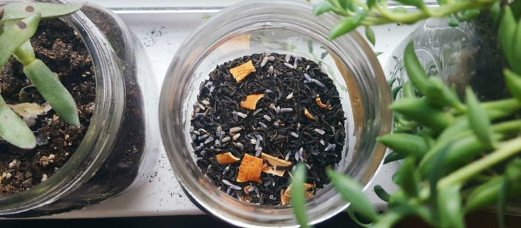 New Moon Tea Blend Recipe | The Witch of Lupine Hollow