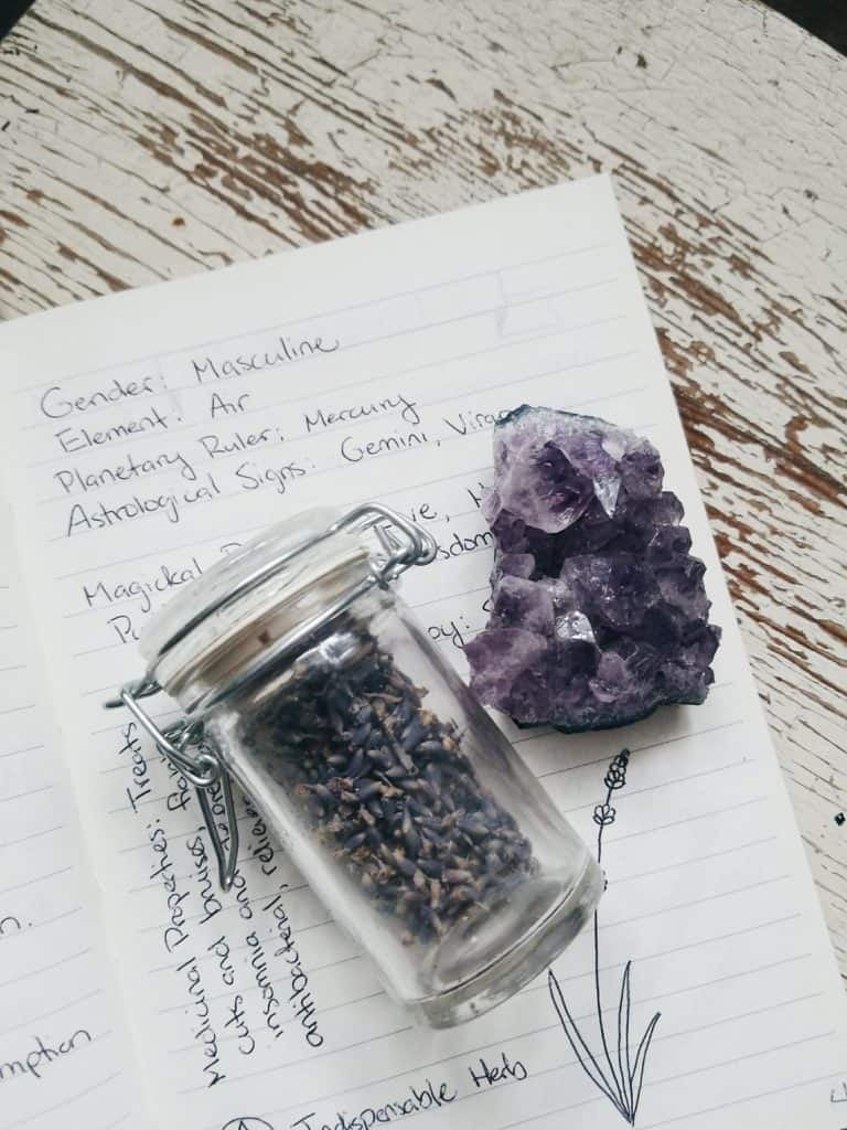Grimoire Inspiration: Materia Medica Herb Pages | The Witch of Lupine Hollow